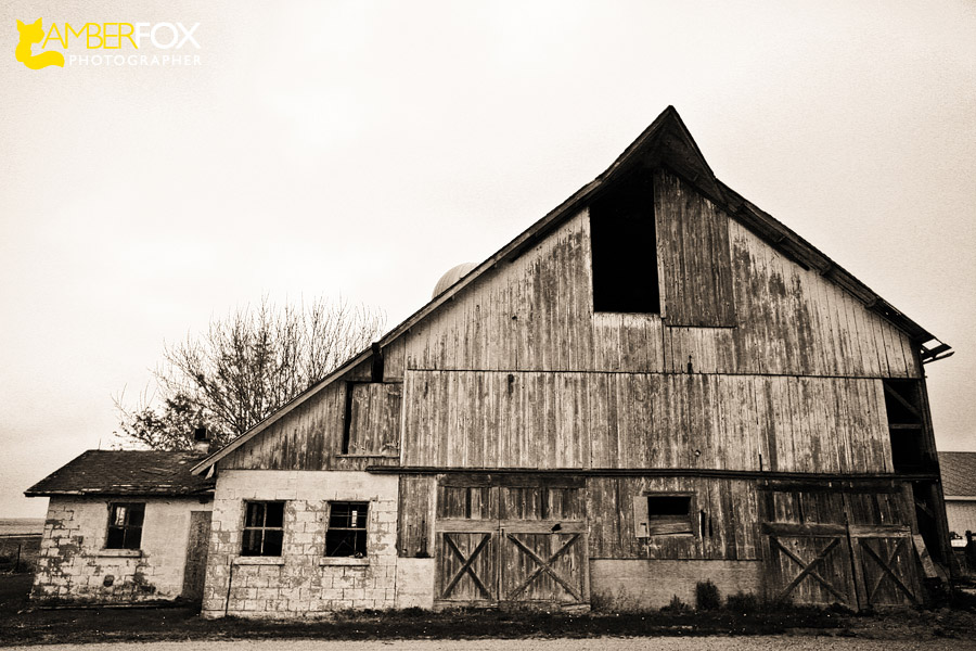 Amber Fox Photographer, Old Barns of Southern Illinois