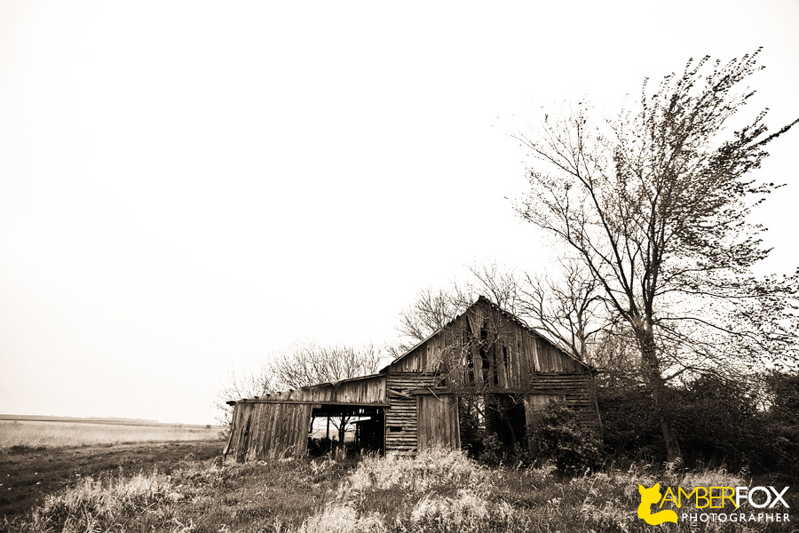 Amber Fox Photographer, Old Barns of Illinois